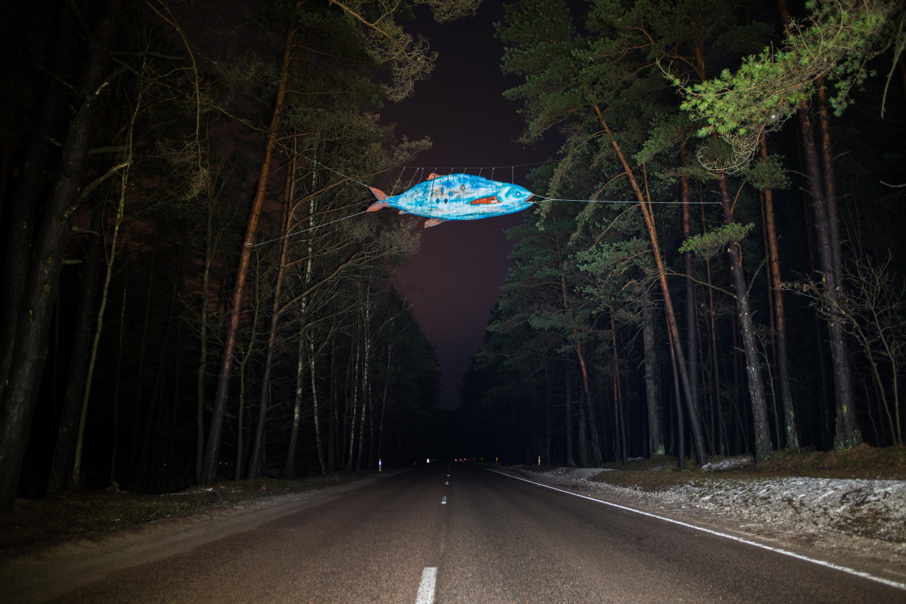 Andrej Polukord, The Fish, On the road to fishing lakes Lithuania 2014, photo Marius Krivičius
