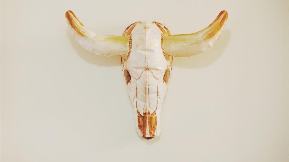 © Kathryn Last Pseudo Cow 2017