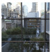 Museum of modern art NY