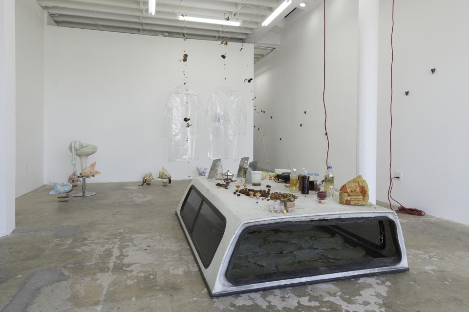 Catalina Ouyang, DEATH DRIVE JOY RIDE, 2018, installation view, image courtesy of Make Room LA