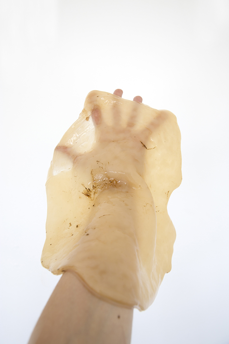 0001_portrait © Flora Deborah, hand of the artist with symbiotic culture of yeast and bacteria
