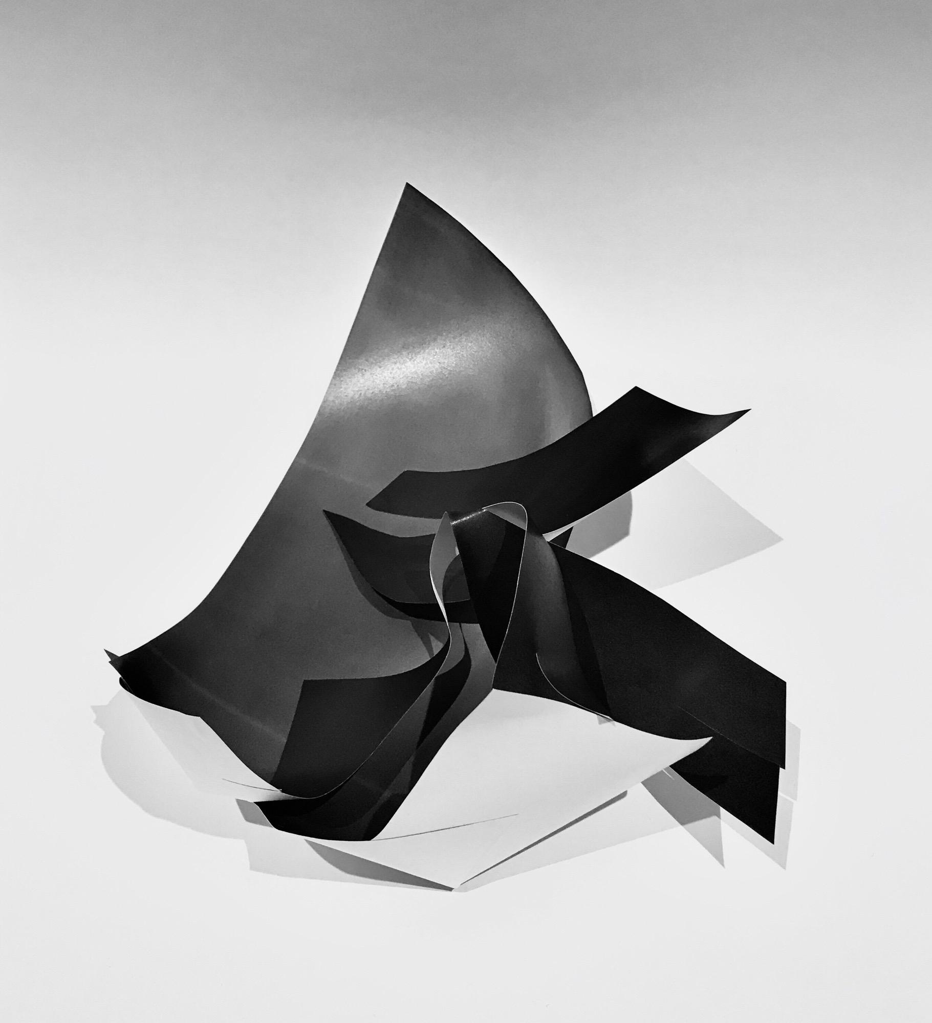 © Neeti Kumar, Paper Flesh, 2020