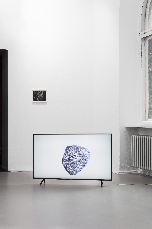 Juliane Tübke, Weathering 2020 Installation view  ©CHROMA