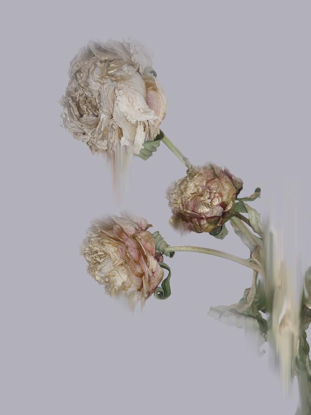 Simone Ember, Glistening Decay, 2018